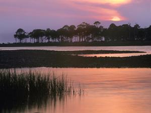 Saint George Island State Park, Saint George Island, Florida, Usa by Tim Fitzharris