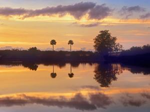 Silhouetted Scenic, Everglades National Park, Florida, Usa by Tim Fitzharris