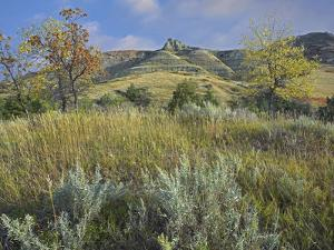 South Unit in Autumn, Theodore Roosevelt National Park, North Dakota by Tim Fitzharris