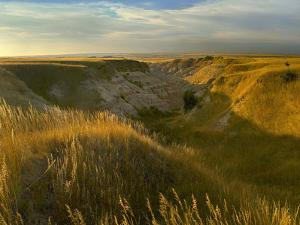 Sunrise over the Prairie, Badlands National Park, South Dakota by Tim Fitzharris