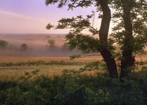 Tallgrass Prairie National Preserve, Kansas by Tim Fitzharris