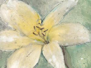 Floral Spirit III by Tim
