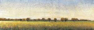 Flowering Meadow I by Tim