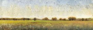 Flowering Meadow II by Tim