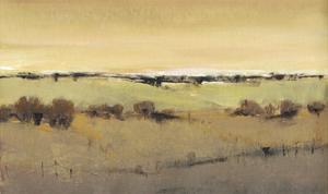 Golden Pasture I by Tim