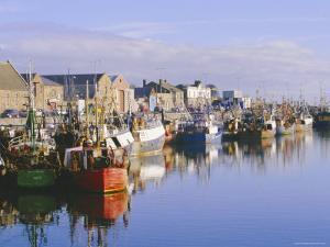 Howth Harbour, Dublin, Ireland/Eire by Tim Hall