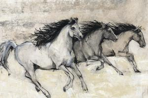 Horses in Motion II by Tim