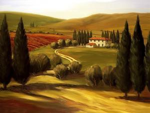 Through the Hills of Tuscany by Tim Howe
