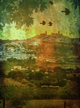 Agizzy by Tim Kahane