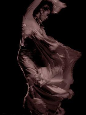 Flamenco by Tim Kahane