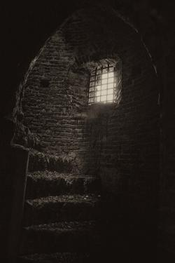 Inside an Old Tower by Tim Kahane