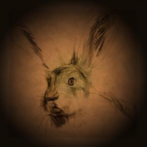 Listening Hare by Tim Kahane