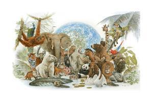 Animal Kingdom by Tim Knepp