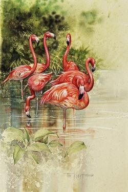 Flamingo Paper by Tim Knepp