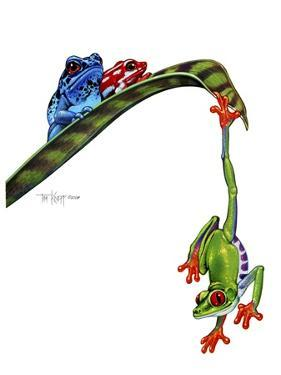 Frogs Hanging Out by Tim Knepp