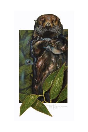 Sea Otter by Tim Knepp
