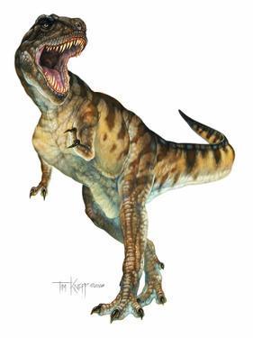 T-Rex by Tim Knepp
