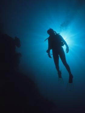 A Scuba Diver Silhouetted by the Sun by Tim Laman
