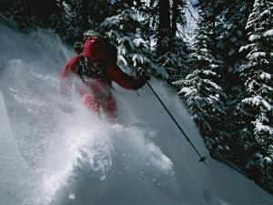 A Skier Skiing Backcountry Powder by Tim Laman