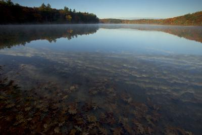 An autumn sunrise at Walden Pond. by Tim Laman