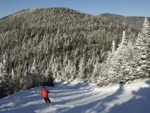 Boy Skis a Run Down from the Summit of Madonna Mountain, Smugglers's Notch, Vt by Tim Laman