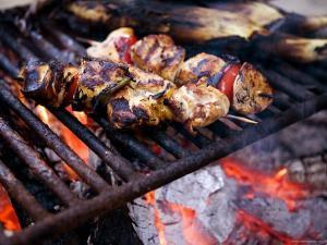 Closeup of Chicken Kebabs Cooking on a Campfire, Cape Cod, Massachusetts by Tim Laman