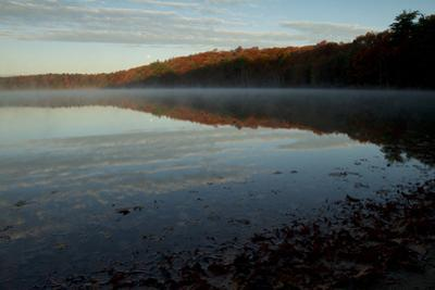 Morning mist rises from Walden Pond in the fall. by Tim Laman