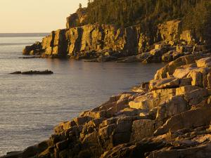 Otter Cliff at Sunrise, in Acadia National Park by Tim Laman