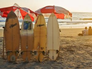 Surfboards on Lighthouse Beach in Late Afternoon Sunlight by Tim Makins