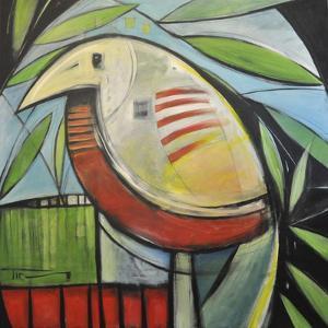 Fancy Bird by Tim Nyberg