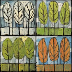 Four Seasons Tree Series Square by Tim Nyberg