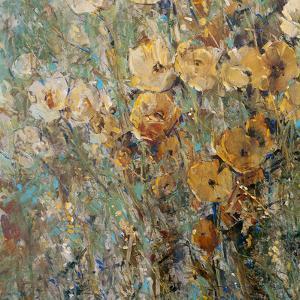 Amber Poppy Field I by Tim O'toole