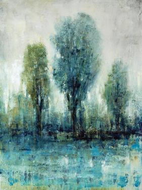 Arbor by Tim O'toole