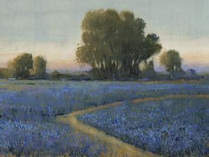Blue Bonnet Field I by Tim O'toole