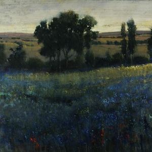 Blue Wildflowers by Tim O'toole