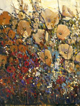 Bright and Bold Flowers I by Tim O'toole