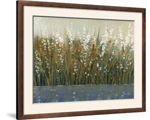 By the Tall Grass II by Tim O'toole