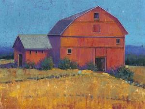 Colorful Barn View I by Tim O'toole