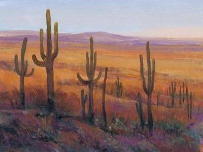 Desert Light I by Tim O'toole