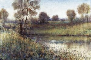 Field And Stream by Tim O'toole