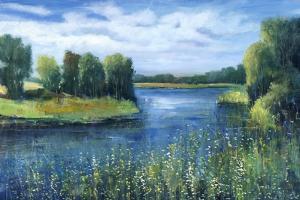 Fishing Spot by Tim O'toole
