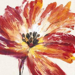 Fleur Rouge I by Tim O'toole