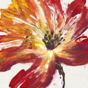 Fleur Rouge II by Tim O'toole