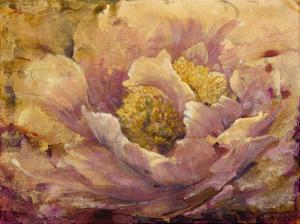 Floral in Bloom I by Tim O'toole
