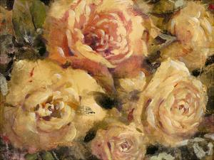 Floral in Bloom II by Tim O'toole