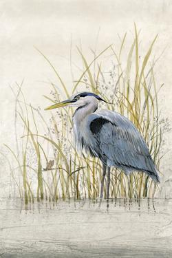 Heron Sanctuary II by Tim O'toole