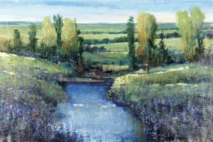 Hidden Pond by Tim O'toole