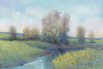 Hidden Stream I by Tim O'toole