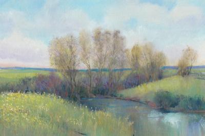 Hidden Stream II by Tim O'toole