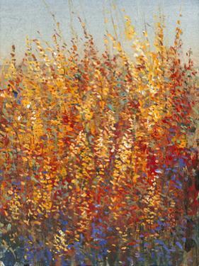 High Desert Blossoms I by Tim O'toole